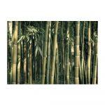 Veľkoformátová tapeta Artgeist Bamboo Exotic, 400 x 280 cm